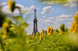 «Юганскнефтегаз» направит около 10 млрд рублей на рекультивацию земель до 2024 года